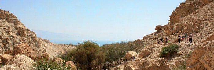Ein Gedi – A Desert Oasis, Secret Perfume, and a Hiding Place for David